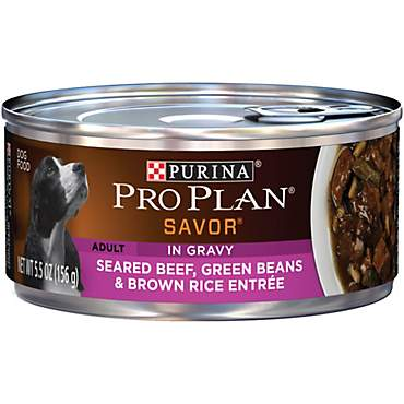 Pro Plan Savor Seared Beef, Green Bean & Brown Rice Adult Canned Dog Food