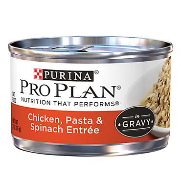 Pro Plan Savor Chicken, Pasta & Spinach Adult Canned Cat Food in Gravy