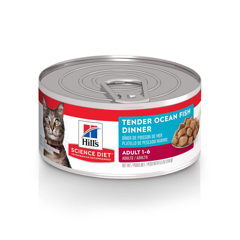 Hills Prescription Diet Kidney Care K D Adult Cat Food