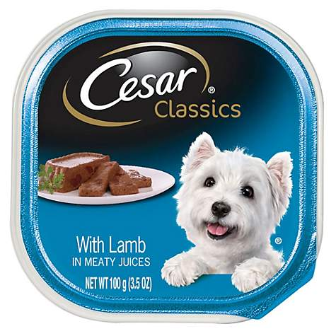 Cesar Canine Cuisine With Lamb Dog Food Trays