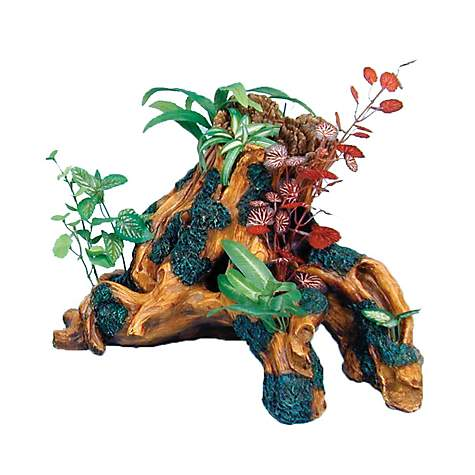 Wonderful Penn Plax Trunk Style Driftwood Gardens | Petco