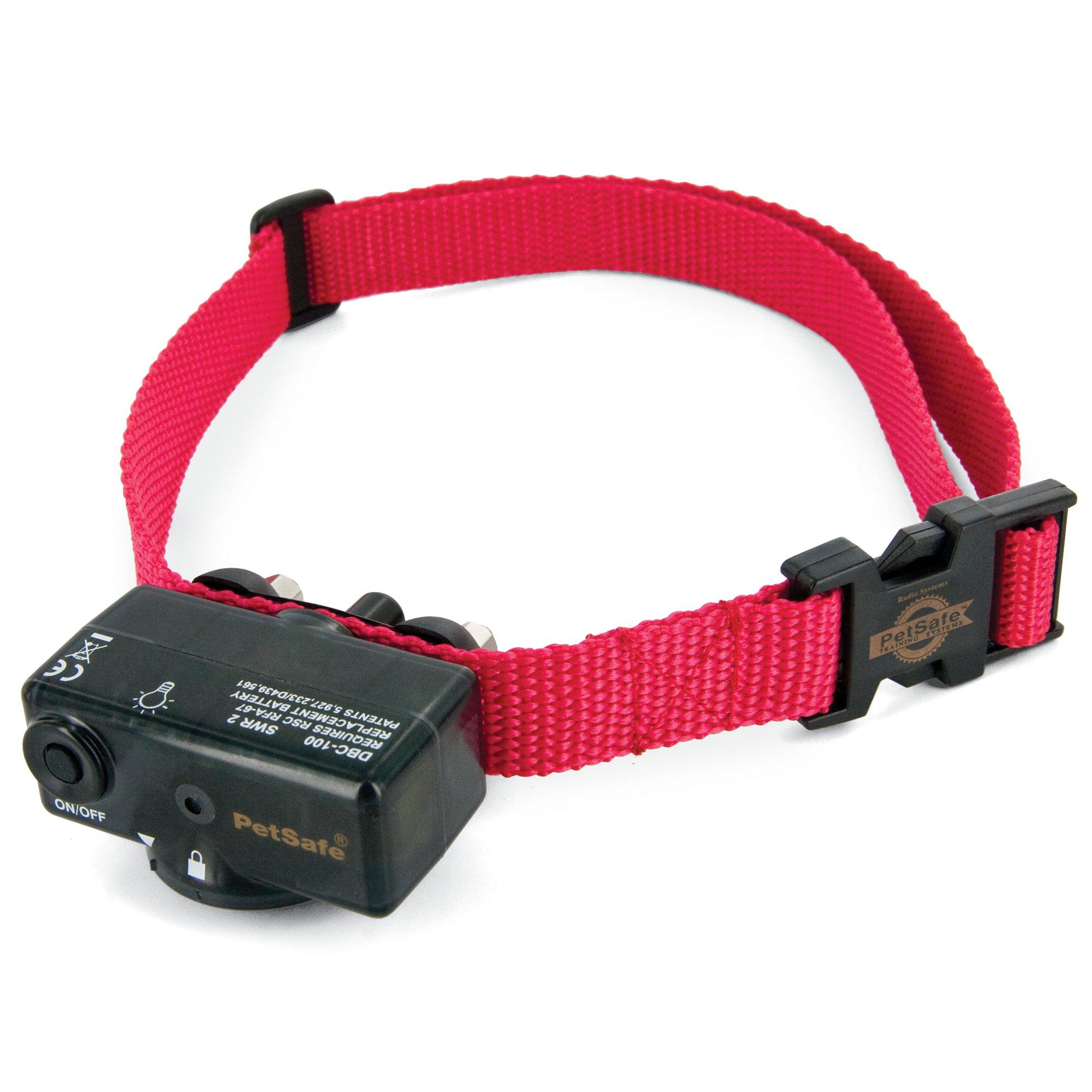 Dog Shock Collar Training Petco