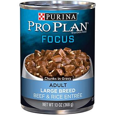Pro Plan Focus Large Breed Adult Canned Dog Food