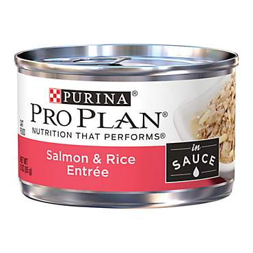 Pro Plan Savor Salmon & Rice Adult Canned Cat Food in Sauce