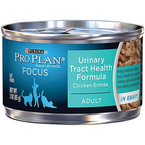 Pro Plan Focus Urinary Tract Health Canned Cat Food
