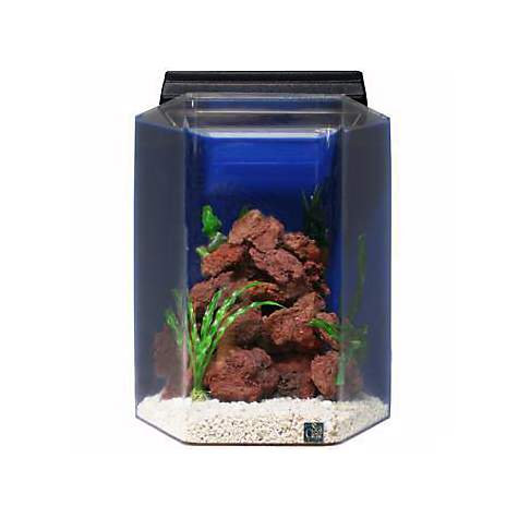 Seaclear deluxe hexagon 20 gallon aquarium combos in blue for Fish tank and stand combo