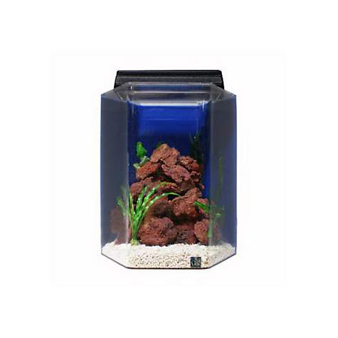 Seaclear junior executive 15 gallon hexagon kits in blue for 20 gallon hexagon fish tank