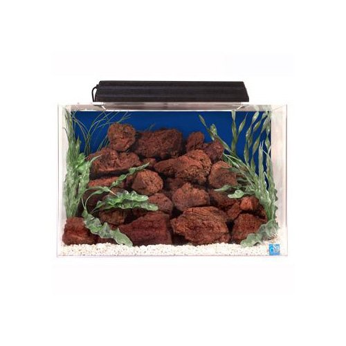 Seaclear rectangular 20 gallon aquarium combos in blue petco for Rectangle fish tank