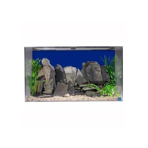 Seaclear rectangular 50 gallon aquarium combos in blue petco for Sea clear fish tank