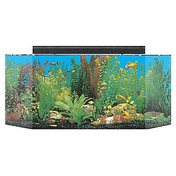 Seaclear system ii 26 gallon aquarium combos in black petco for Fish tank and stand combo