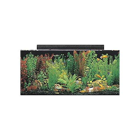 SeaClear System II 40 Gallon Aquarium Combos in Black