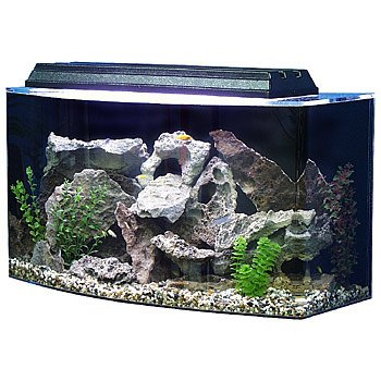 Seaclear bowfront 36 gallon aquarium combos in clear petco for Petco small fish tank