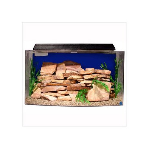 Seaclear bowfront 36 gallon aquarium combos in blue petco for Petco fish tank sale