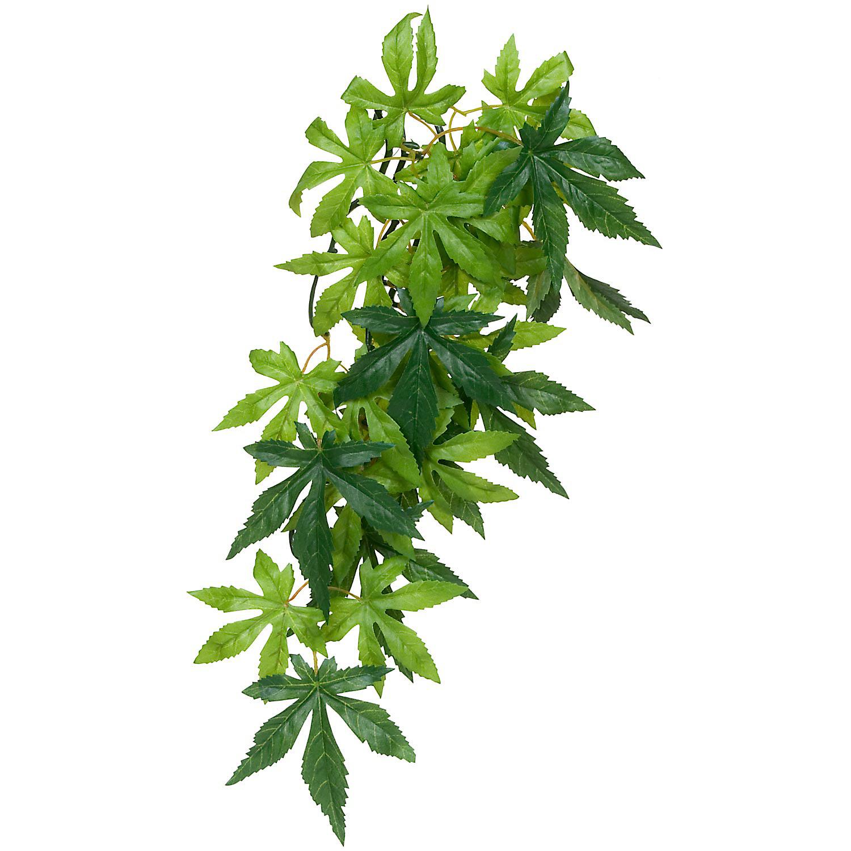 Exo Terra Silk Abutilon Jungle Plant Green