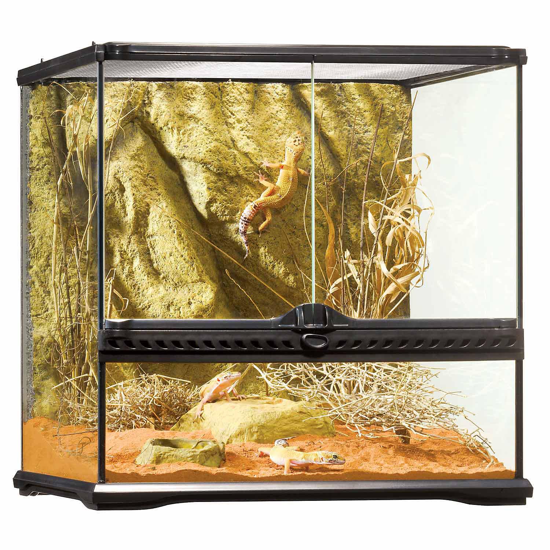 Exo Terra Glass Terrarium 18 L X 18 W X 18 H