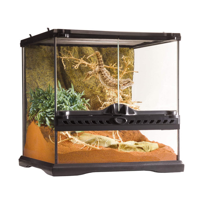 Exo Terra Mini Wide Terrarium 12 X12 X12 Petco