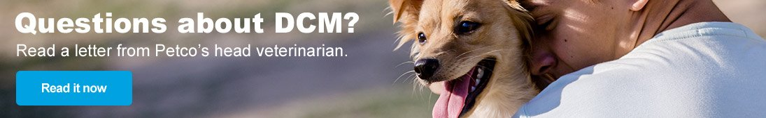 Questions about DCM? Read a letter from Petco's head veterinarian - Read it now