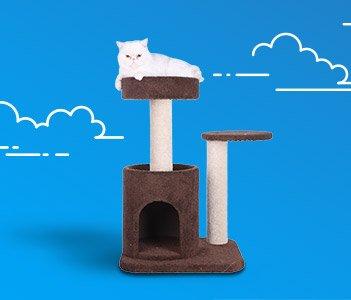 Petco Sales Amp Deals Dog Food Cat Food Amp Supplies Petco