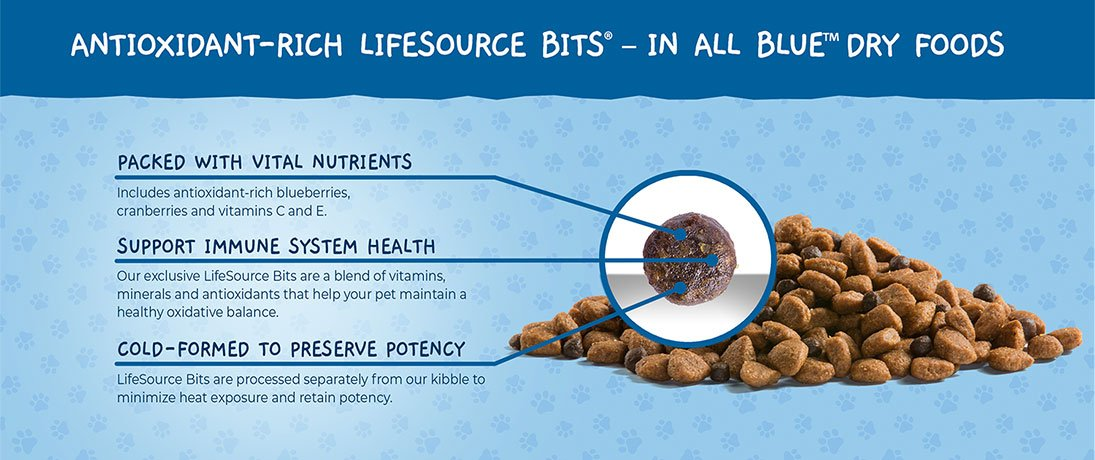Antioxidant-Rich Lifesource Bits - In All BLUE Dry Foods