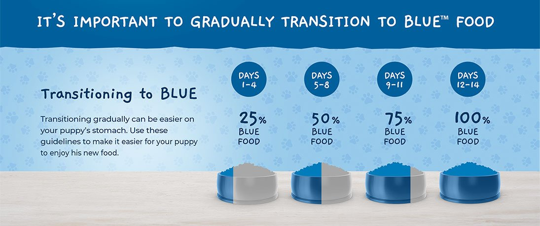 It's Important to Gradually Transition to BLUE Food