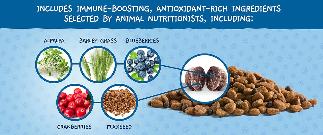 Includes Immune-Boosting, Antioxidant-Rich Ingredients Selected By Animal Nutritionists