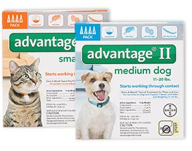 Can You Use Dog Advantage Ii On Cats
