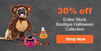 Buy 1 Get 1 50% off on Halloween Bootique products - shop now