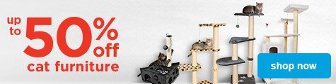 up to 50% off cat furniture - shop now