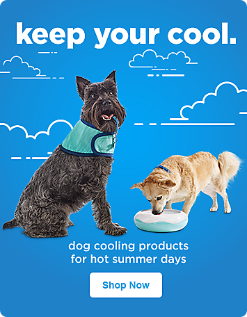Pet supplies pet food and pet products petco home promo 6 042218 solutioingenieria Choice Image