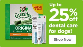 Up to 25% off dental care for dogs - shop now