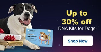 Up to 30% off DNA Kits - Shop Now