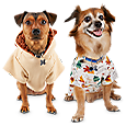 Up to 65% off dog apparel