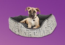 Up to 40% off Dog Beds - Shop Now