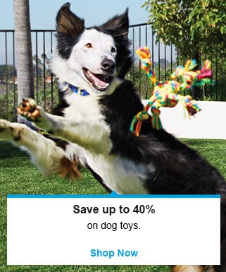 Save up to 40% on dog toys - Shop Now