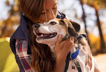 Positive Rewards Dog Training And Pet Services