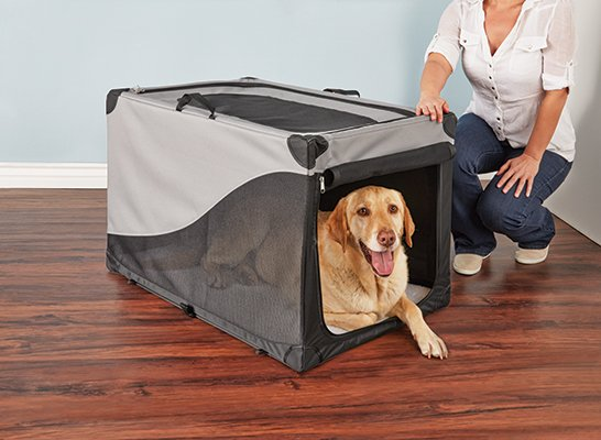 Picking The Right Type And Size Crate For Your Dog Petco