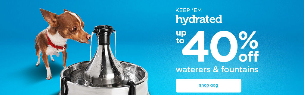 up to 40% off dog waterers and fountains - shop now