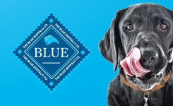 Pet Solutions Events Featuring Blue Buffalo