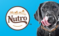 Pet Solutions Event Featuring NUTRO Dog Food
