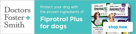 Protect your dog with the proven ingredients of Fiprotrol Plus - shop now