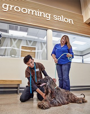 7 Questions To Prepare For Your Pet S First Visit To A Grooming Salon