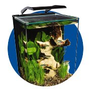 Featured Categories - Aquariums, Kits & Stands