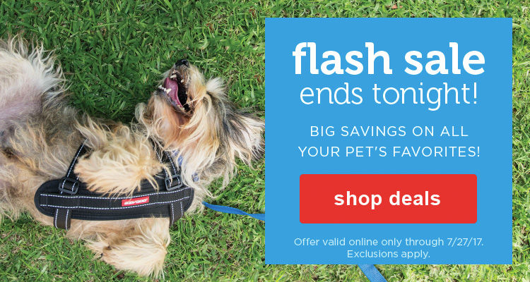Flash sale ends tonight! Big savings on all your pet's favorites - shop deals