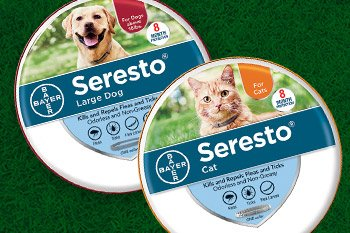 Up to 45% off flea and tick solutions for dogs and cats