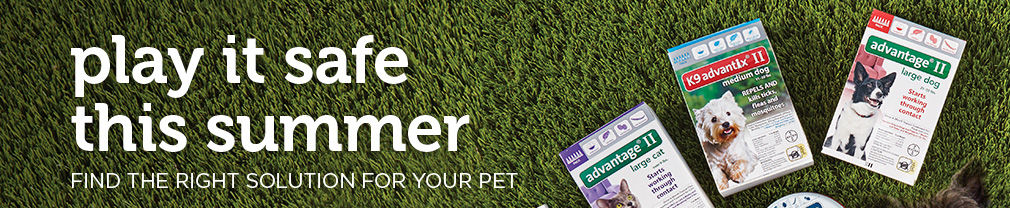Play it safe this Summer. Find the right solution for your pet.