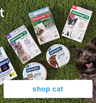 up to 60% off select cat flea & tick brands - shop now