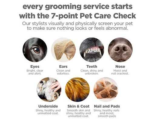 Petco 7 point pet care check