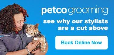 Pet Supplies Pet Food And Pet Products Petco