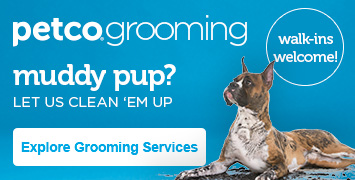 Learn More about Dog Grooming at Petco