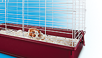 Up to 25% off - Small Pet Habitats - Shop Now